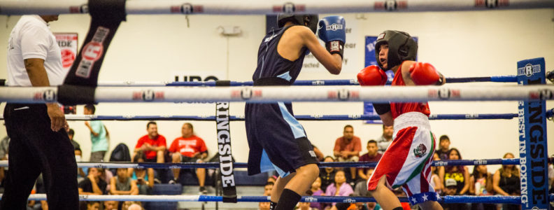 2016-national-pal-boxing-tournament_27924086652_o